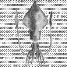 squidsilo